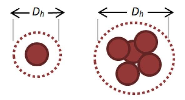 Representative increase in Hydrodynamic Diameter as Nanoparticles Aggregate.