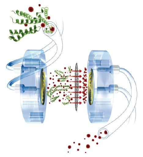 Working principle of patented Stopped Flow Dialysis: During the whole sampling process, the charged sample is continiously passed through the sample side of the Dialysis Cell, to the left of the membrane. On the opposite side of the membrane, an acceptor solution is sitting idle in the dialysis cell and is being charged with the ions passing through the membrane due to the existing concentration gradient. This process is only stopped when an equilibrium is established, and thus the concentration of the acceptor solution matches that of the original sample. Finally the acceptor solution is injected directly and fully automatically into the IC.