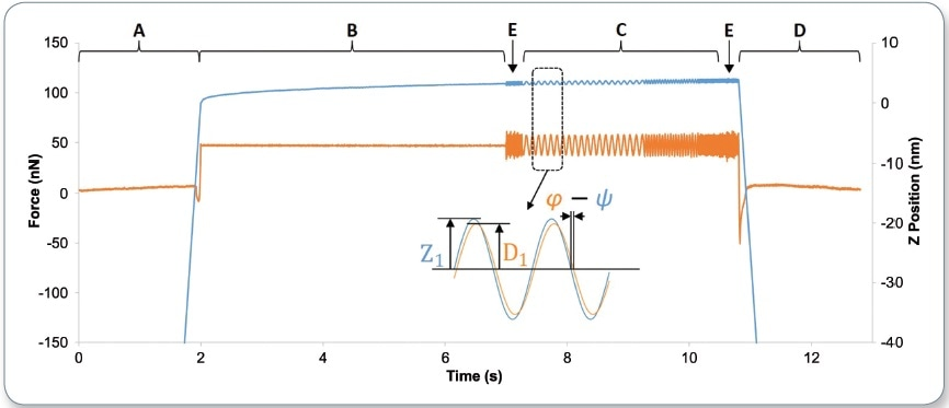 Typical AFM-nDMA spectroscopy force (orange) and Z position (blue) data. The tip is brought into contact and a preload is applied (marked A); the system waits for creep relaxation (B); low-amplitude modulation occurs at various frequencies, including reference frequencies (C and E); and the tip is retracted from the sample (D). Inset shows the key parameters to be extracted from the modulation segments: the deflection amplitude, D1, the Z amplitude, Z1, and the phase shift between Z and deflection (? - ? ).