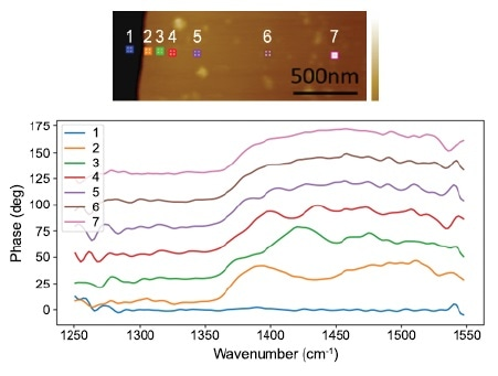 Near-field optical spectrum on a thin hBN nanoflake shows a systematic spectral shift varying with distances to the edge