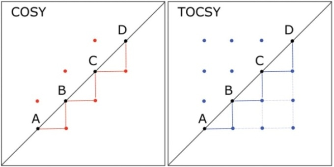 Comparison of 2D COSY and 2D TOCSY spectra for a hypothetical molecule in which hydrogen A is coupled to hydrogen B, which is coupled to C, which in turn, is coupled to D. Lines are drawn to connect the peaks below the diagonal, illustrating the throughbond connectivity shown by each spectrum; heavier lines indicate couplings shown in both spectra, and lighter lines indicate connectivity shown in the TOCSY spectrum but not the COSY.