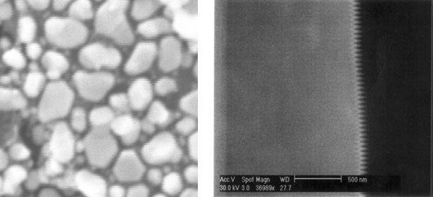 Figure 2: Vibration Noise Affecting An Image (Left) and AC Field Noise Affecting An Image (Right)