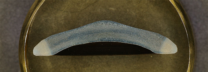 View the entire forged product with a low-magnification objective lens (1X).