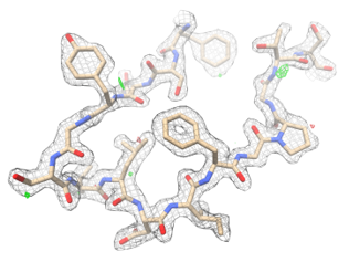 LCP-MicroED structure of proteinase K. Density map (wireframe) is superimposed with molecular structure (color).