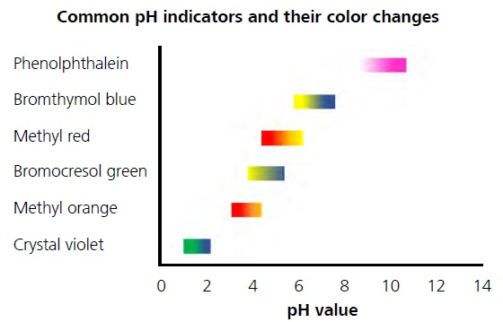 Color variations of different pH indicators depending on the pH value.