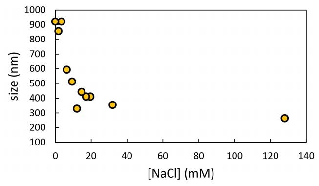 The Importance of Ionic Strength to DLS Measurements
