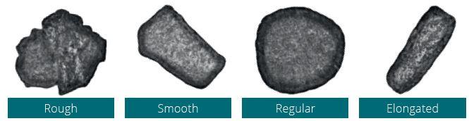 Particle Morphology