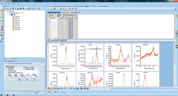 Screenshot of full chemical state quantification after all spectra have been analyzed.