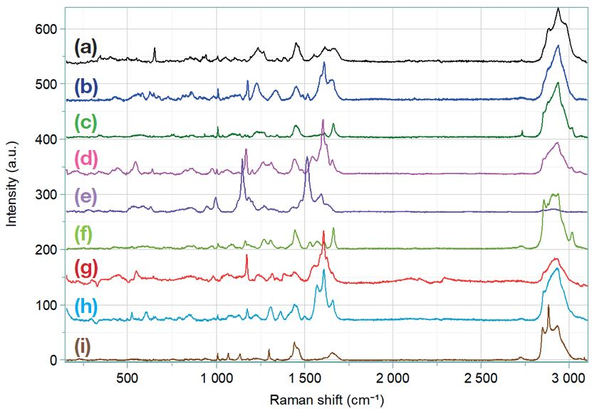 Reference spectra of aeroallergens. (a): Dander, (b): Cherry tree pollen, (c): Camellia pollen, (d): Lily pollen, (e): Rose pollen, (f): flower of Thistle pollen, (g): Oak pollen, (h): Grass pollen, (i): Dust mite.