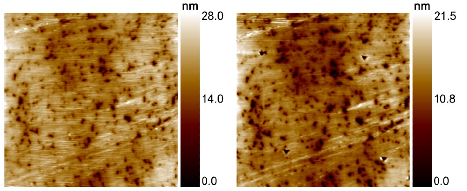 In-situ SPM image of polished nitride hard coating showing pre-test (left) and post-test (right). Image scan size was 20 µm.