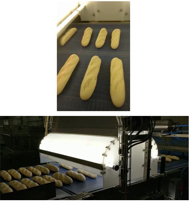 Par-baked baguettes passing through the vision inspection system.