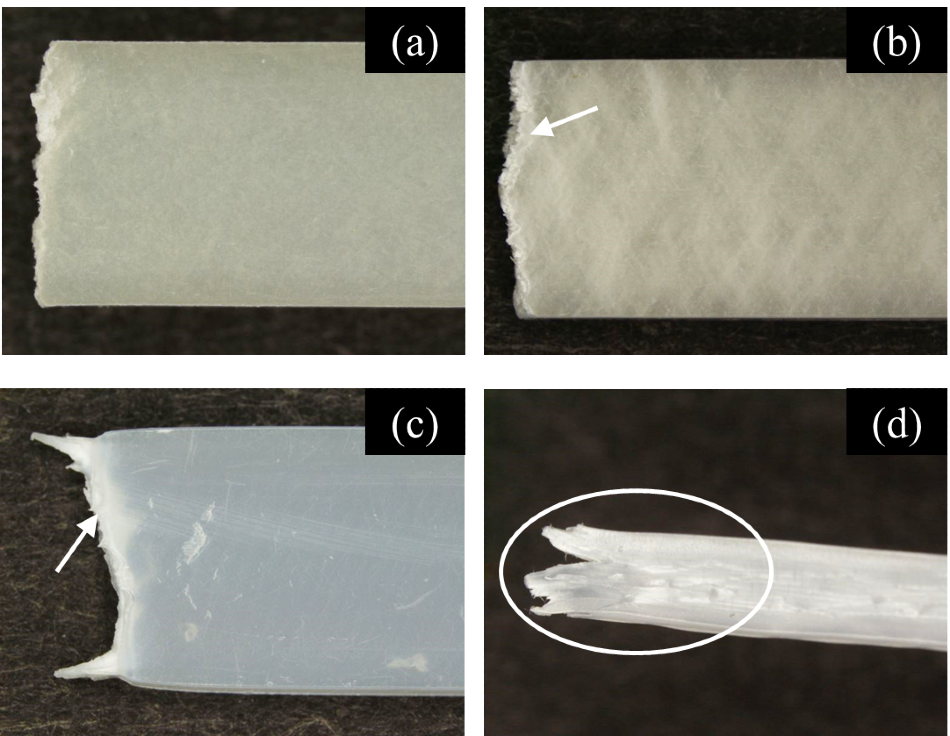 Images of Lateral Surfaces of Specimens after Test. (a) CNF10%/HDPE, 100 /s, (b) CNF10%/HDPE, 0.0001 /s, (c) HDPE, 100 /s, (d) HDPE, 0.0001 /s.