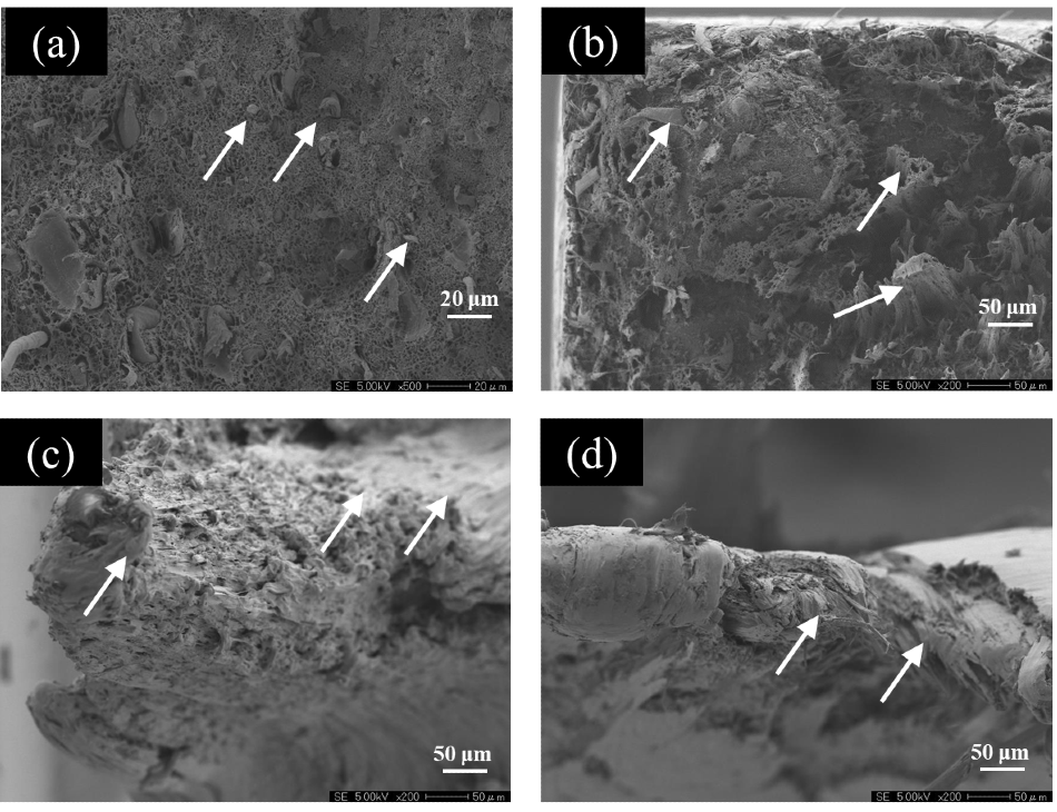 EPMA Observation Images of Fracture Surfaces. (a) CNF10%/HDPE, 100 /s, (b) CNF10%/HDPE, 0.0001 /s, (c) HDPE, 100 /s, (d) HDPE, 0.0001 /s.