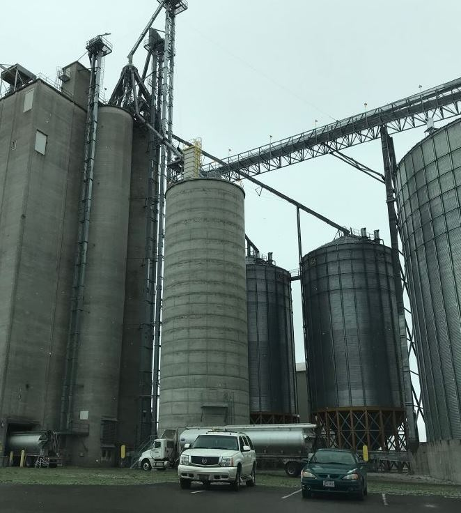 This poultry producer has a strong corporate safety culture making an automated inventory system a great fit. BinMaster level sensors eliminate the need to climb bins to check levels, which make the workplace safer for the mill
