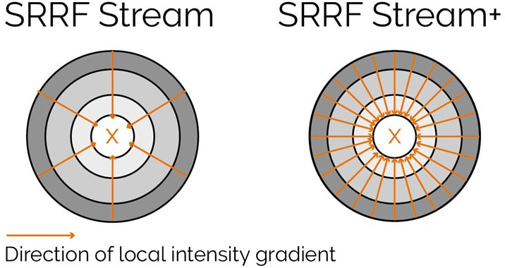 Radiality computation measurements in SRRF-Stream and SRRF-Stream+As it can be observed by the image the increased computational radiality measurements will deliver a more accurate result of the SRRF image.