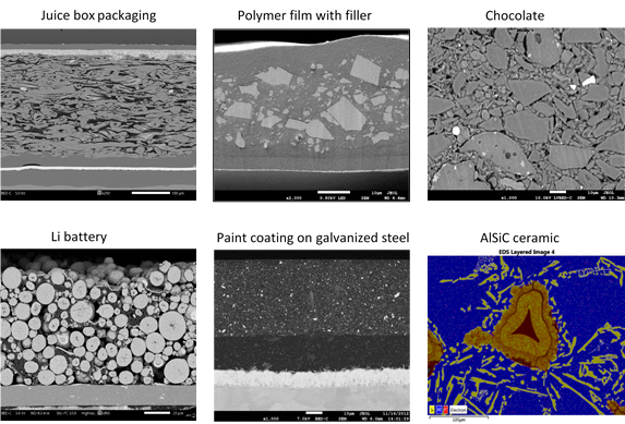 SEM images of cross-sections obtained with the JEOL CP.