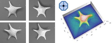 LIVE 3D surface representation during SEM observation using multi-segmented backscatter detector.