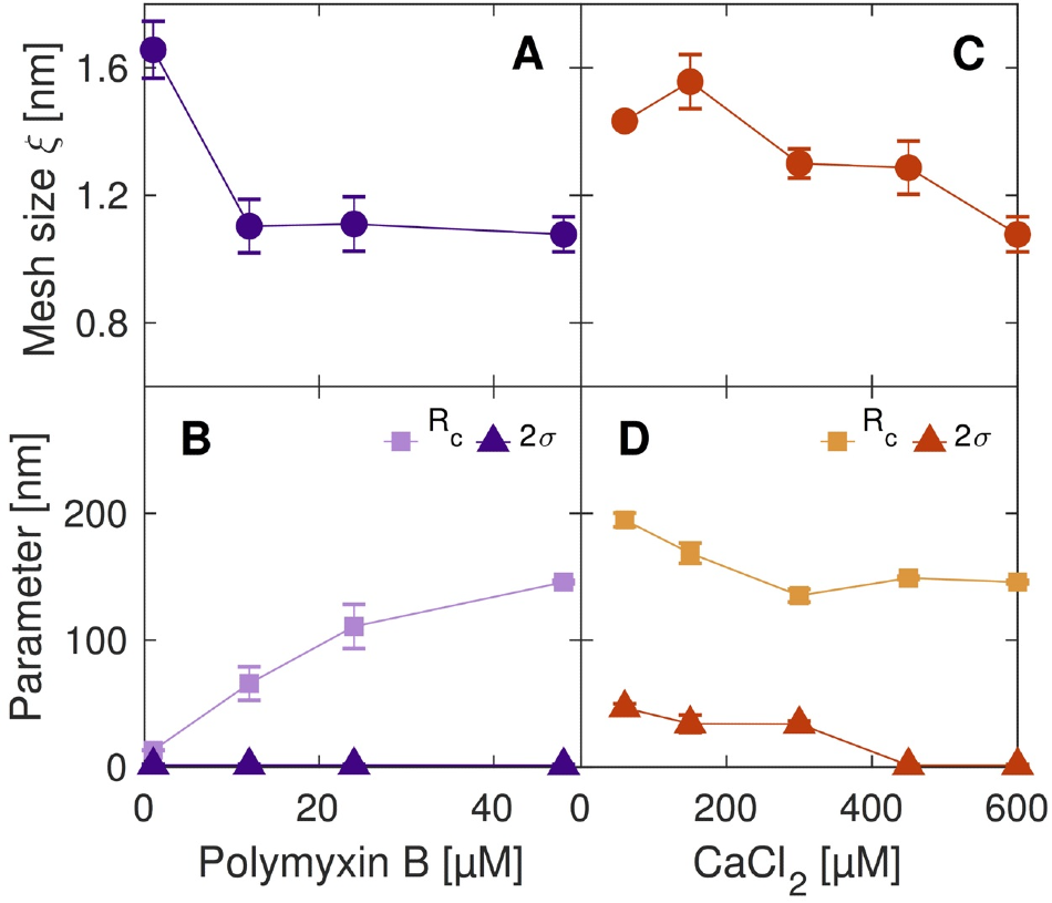 Structural parameters of the microgels, extracted from the SAXS data as a function of the amount of peptide loaded (Polymyxin) and crosslinker (CaCl2 ) respectively.