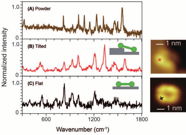 Single-molecule TERS of a porphyrin derivate examined with UHV-STM at low temperatures. (A) The Raman spectrum from powder represents many orientations, whereas (B) TERS was able to resolve a molecule tilt, and (C) also shows single-molecule resolution on a flatly oriented molecule. Especially the differences between TERS spectra (B) and (C) are remarkable.