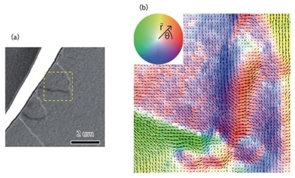 (a) Lorentz TEM image of a Ni film, detailing magnetic domain walls; (b) Map of the magnetic field of the same region in (a), acquired in DPC STEM. The deflection of the incident beam when passing through a ferromagnetic specimen can be captured in the CBED pattern recorded at probe position in a 4D STEM dataset. The magnitude and direction of this shift can be directly measured, as shown