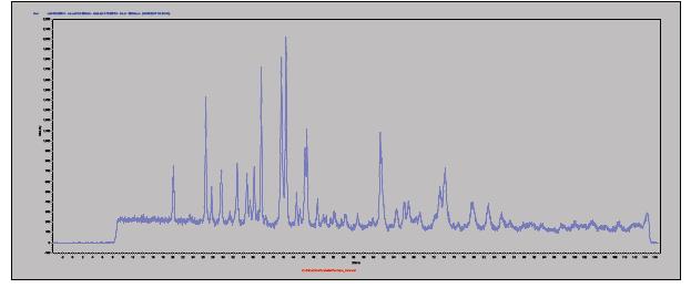 5-minute raw data.