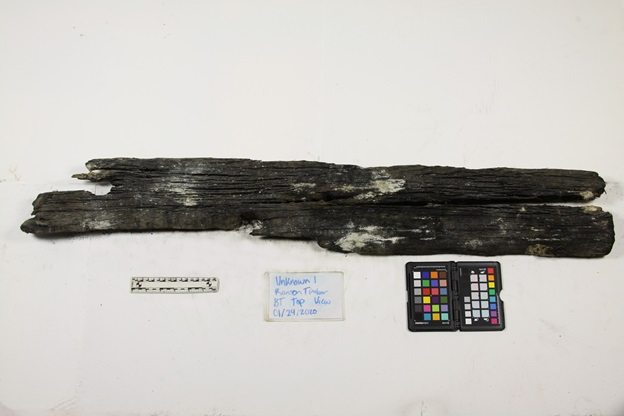 A Princess Carolina timber currently deteriorating as a result of acidification. Image courtesy of The Mariners' Museum and Park