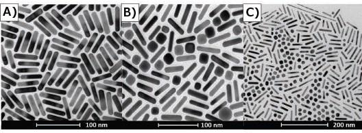 TEM's of gold nanorods illustrating selection bias. A) Section of TEM grid indicates high purity rod synthesis. B) Different section of same grid shown by (A) indicates a large number of impurities in sample. C) TEM demonstrates shape segregation drying pattern on TEM grid.