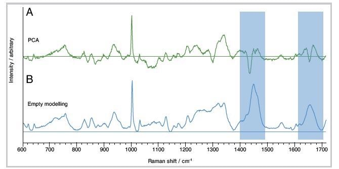 Protein component spectra obtained from a sample of porcine tissue. (A) Biological loading obtained from PCA. The spectrum is an abstract mathematical representation of the data – as indicated by negative peaks. (B) Biological component obtained from the Empty Modelling method. The spectrumrepresents a real material