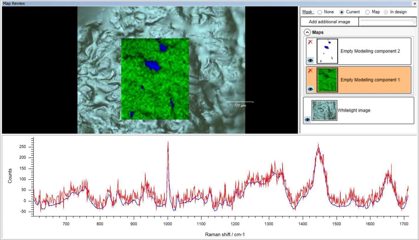 After analysis, the Empty Modelling method displays the component spectra and the corresponding concentration images