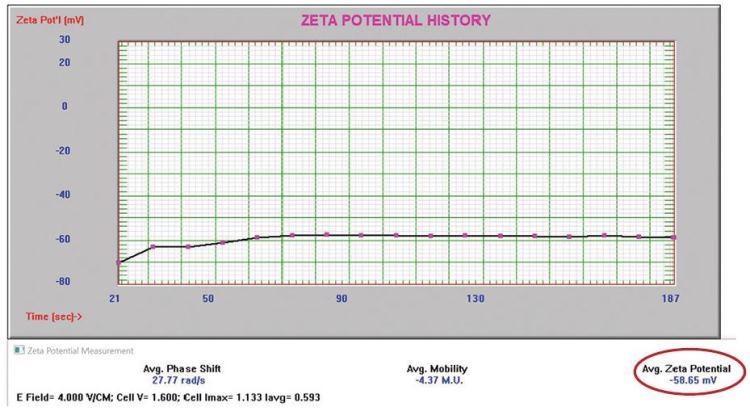 Negatively charged alumina abrasive zeta potential.