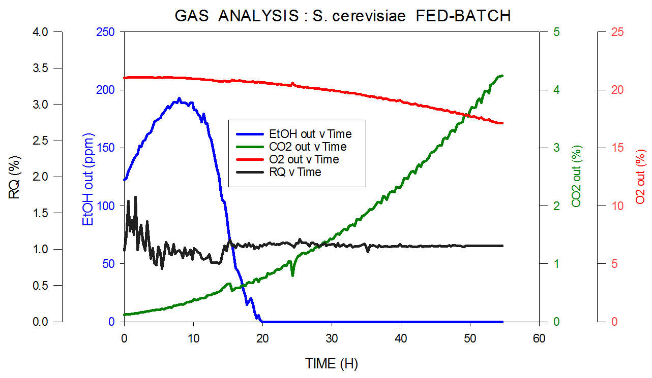 Off-gas and RQ data generated by MS from S. cerevisiae fed-batch fermentation.