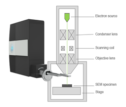 The Monarc CL detector is attached to a scanning electron microscope.