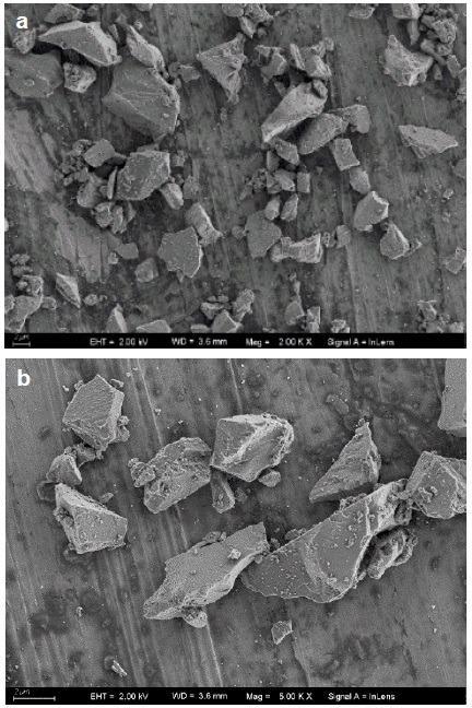 SEM images of a common abrasive (zirconium oxide) having sharp edges.