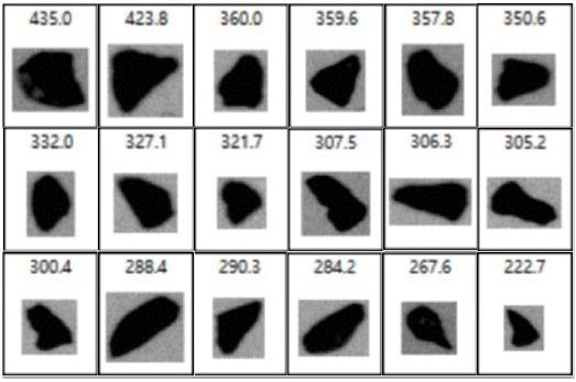 Camera images extracted from the individual particle list ofa coarse abrasive powder (between about 500 and 200 µm).