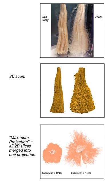 Comparison of two tress samples; 3D scans of tresses; maximum projection scans