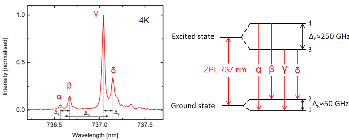 Normalized emission spectrum and state transitions of SiV -.