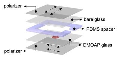 Exploded diagram to show the layered make-up of the putative diagnostic device, the LC sensor is show as a dark red spot on the DMOAP glass layer.