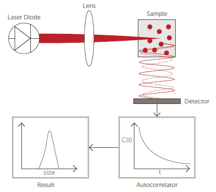 Optical diagram of a DLS system.