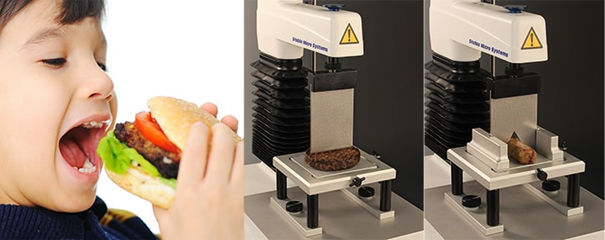 Typical cutting tests on a Texture Analyser imitating the biting action.