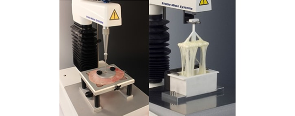 Film Support Rig and Cheese Extensibility Rig on a Texture Analyser.