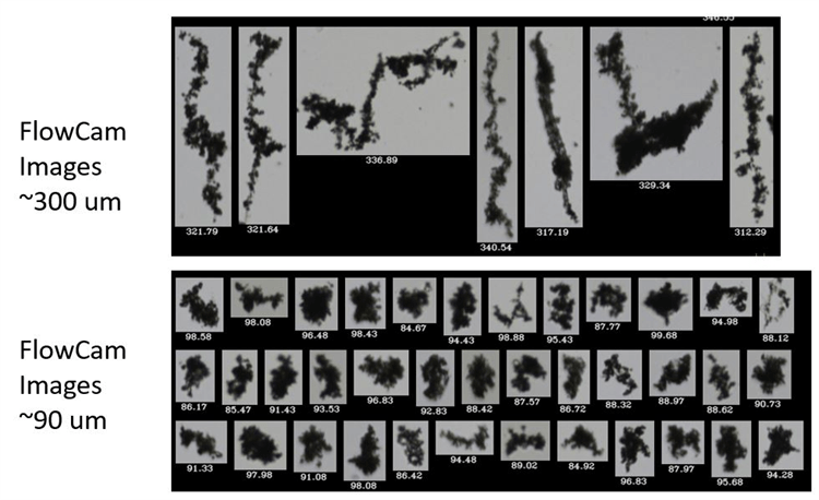 FlowCam digital images of particles greater than 90 µm, and even greater than 300 µm that were missed entirely by laser diffraction.