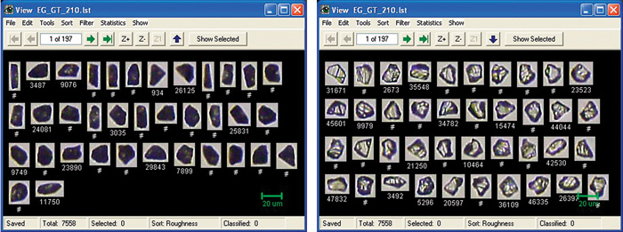 Ensuring Quality Control Measures with Particle Shape Analysis