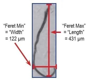 Feret's Diameter used to calculate length and width.