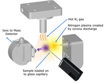 Bringing Ambient Ionization in Mass Spectrometry to the World