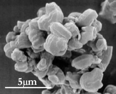 AZoJoMo – AZoM Journal of Materials Online : SEM micrograph of ordered dye-functionalized mesoporous silica