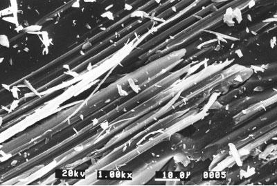 AZOJomo - The AZO Journal of Materials Online - Surface of soda-lime glass following ruling test at a load of 0.9N