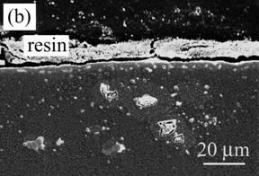 AZoJomo - The AZO Journal of Materials Online - Cross-section of Ni/Al2O3 oxidized at 1300ºC for 1 d in air.  (a) low magnification and (b) high magnification near the surface.