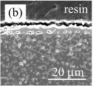AZoJomo - The AZO Journal of Materials Online - Cross-section of nano-Ni/Al2O3 oxidized at 1300ºC for 1 d in air. (a) low magnification and (b) high magnification near the surface.