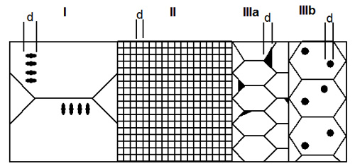 Transformation toughened zirconia schematic microstructures