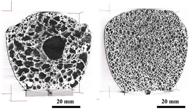 Cross sections of two aluminium foams with contrasting closed pore structures (left) showing coarse and irregular pores and (right) showing fine and spherical pores